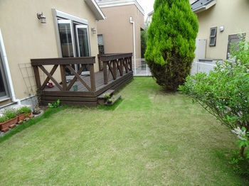 20120722_Lawn.JPG
