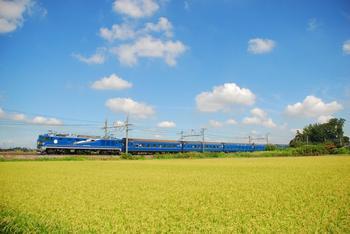 20120826_Hokutosei.JPG