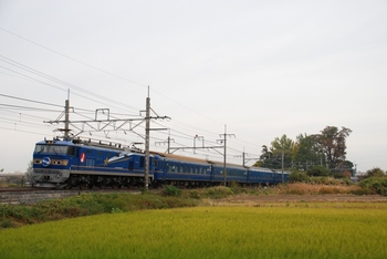 20121111_Hokutosei.jpg