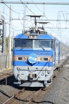 20130101_Hokutosei.jpg