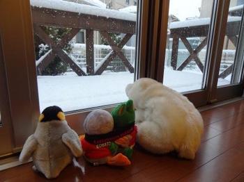 20130114_Snow2.jpg