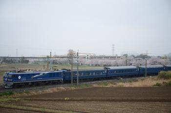 20130331_Hokutosei.jpg