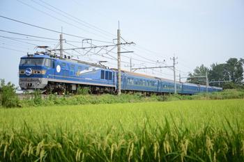 20130817_Hokutosei.jpg