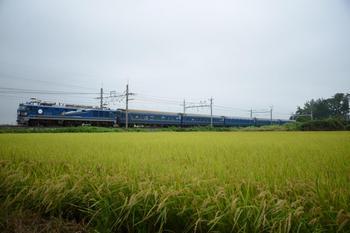 20130908_Hokutosei.jpg