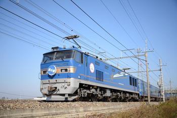 20131117_Hokutosei.jpg