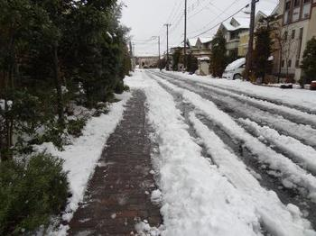 20140215_Snow1.jpg