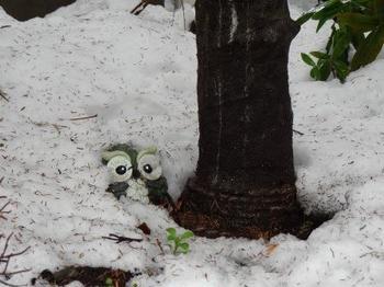 20140215_Snow3.jpg