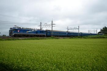 20140810_Hokutosei.jpg