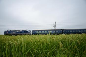 20140816_Hokutosei.jpg