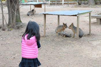 20170129_Zoo4.JPG