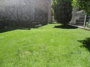 20140614_Lawn1.jpg
