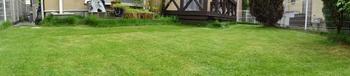 20140815_Lawn4.jpg