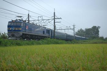 20140907_Hokutosei1.jpg