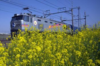 20150418_Hokutosei_s.jpg
