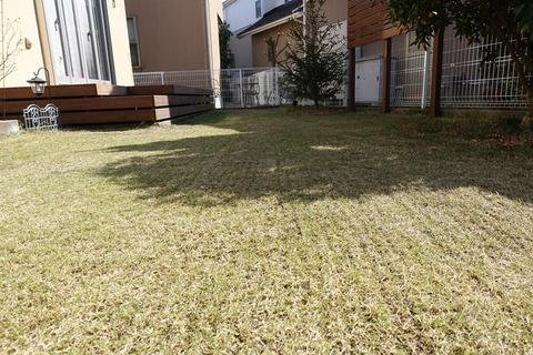 20190223_Lawn2.jpg